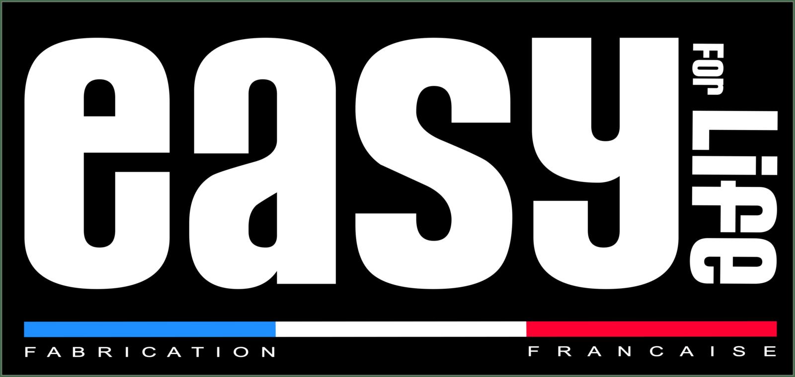 logo easy for life